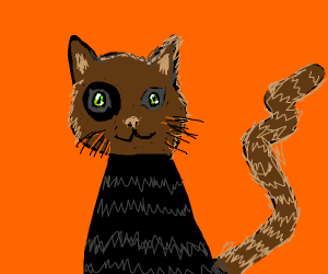 black cat w/ brown head+tail and stripes