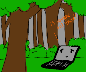 A Laptop lost in the woods