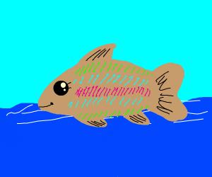 Rainbow Trout crossing the Ocean