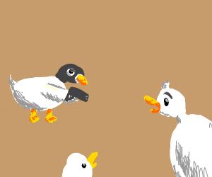 GUN( everyone duck!)