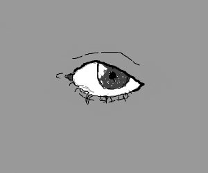 detailed, grayscale eye