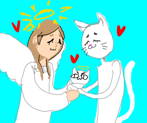 an angel and a cat have a child