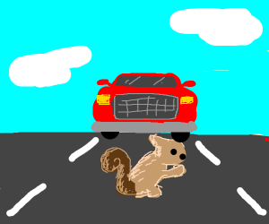 Squirrel digging into the Highway
