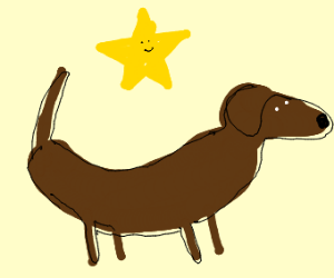 A weenie dog with a star above it