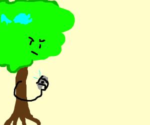 Tree has Twitter