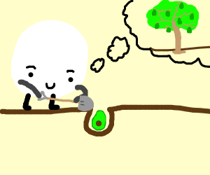 White thing buries avocado and hopes it grows