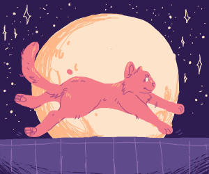 Cat flies past full moon