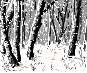 snow storm on forest
