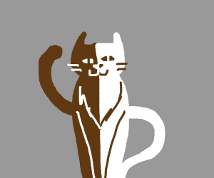cat (brown and white)