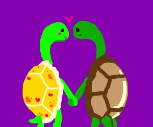 gay turtle monsters