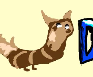 Furret walks around Drawception