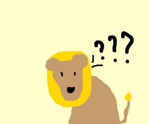 Confused lion