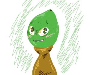 A Literal Lemonhead