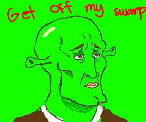 Handsome Shrek
