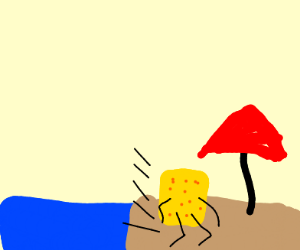 Cheese Running On A Beach