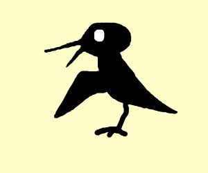 Bird lookling