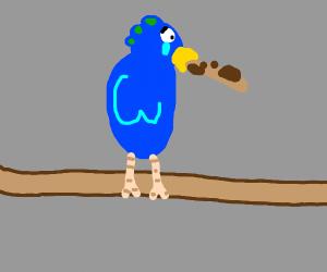 Bird can't eat huge cookie