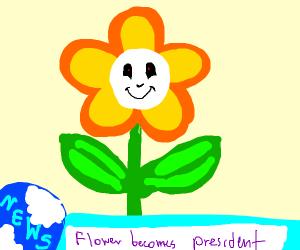 a flower as a present