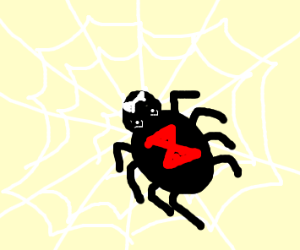 Black Widow spider in her web