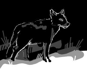 The Black wolf... just stands!!! :0