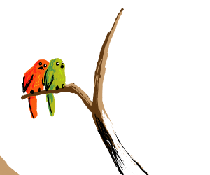 A red bird and a green bird sitting together