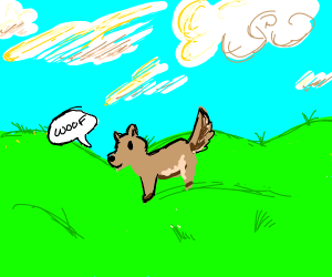 Dog says woof in the middle of a field