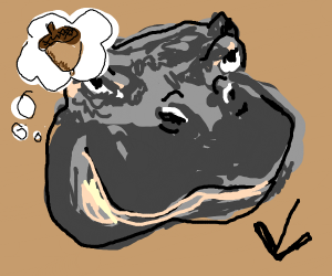 hippo believes that you are an acorn