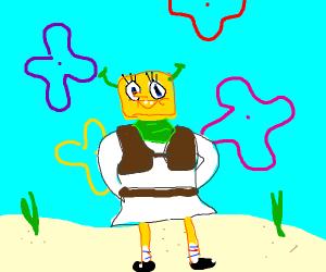 Fusion of Shrek + Spongebob