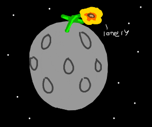 lone flower on the moon
