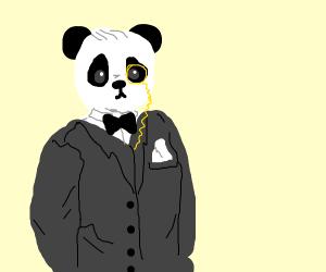 formal panda