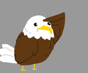 A cute bald eagle