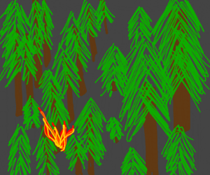 The Start Of A Forest Fire