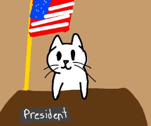 President Cat