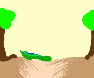 Eel crossing Quicksand