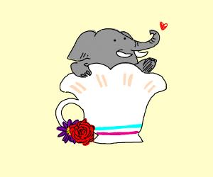 elephant inside of a teacup