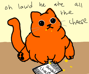 Obese orange cat with yellow stains