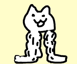 Macho Legs Cat