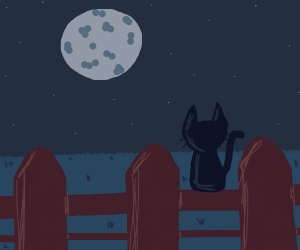 A black cat on a fence staring at the moon