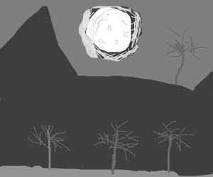 Dark spooky forest under moonlight