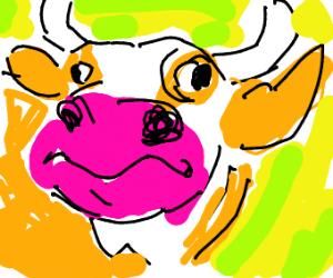 cow on acid
