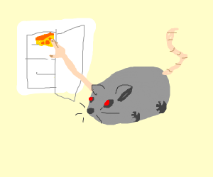 one-armed rat requires chees from fridge