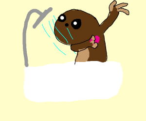 sloth taking a shower