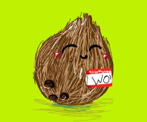 Wo the sentient Coconut♡
