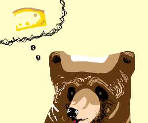 bear thinks about cheese