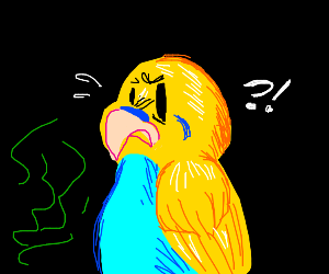 disgusted bird