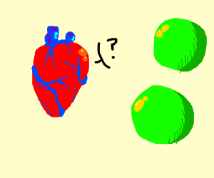 Heart questions red and green spheres