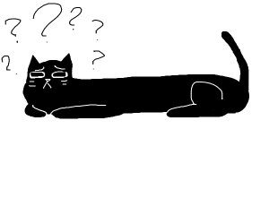 Long cat gets confused
