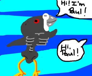 A Very Thin Pigeon Named Paul