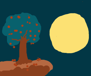 Berry Tree at Night with Full Moon