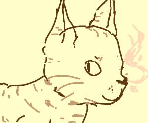 cat breaths pink fire